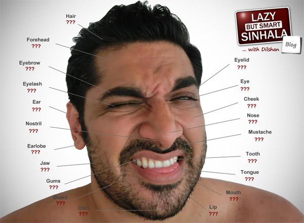Face in Sinhala Lazy But Smart Sinhala