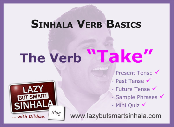 sinhala verbs take