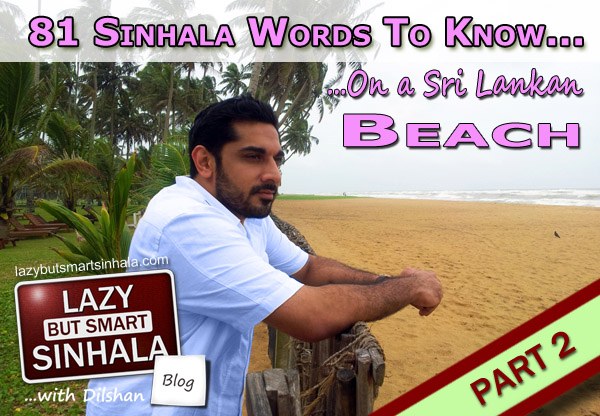 Sinhala Words Sri Lankan Beach-P2