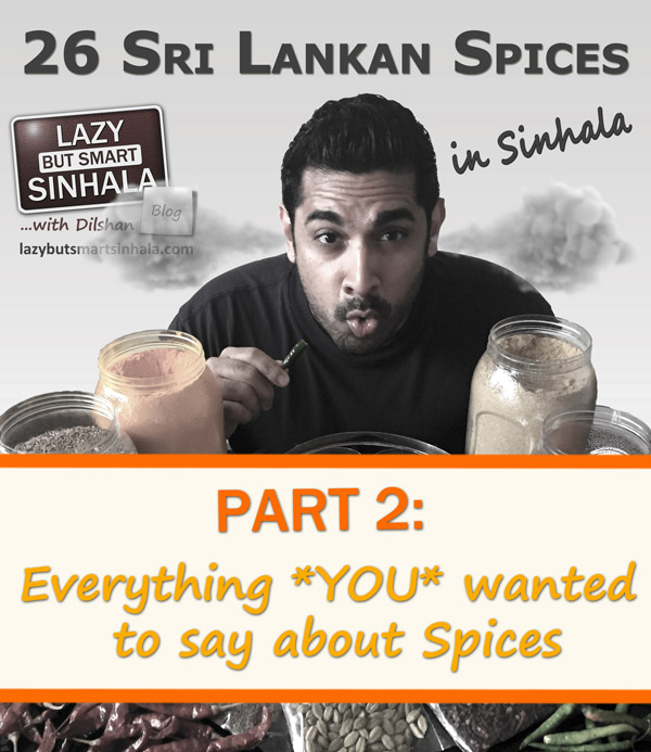 27-sri-lankan-spice-in-sinhala-part-2-lazy-but-smart-sinhala-1
